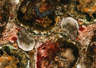 Caesarstone_Concetto_8330-Petrified-Wood
